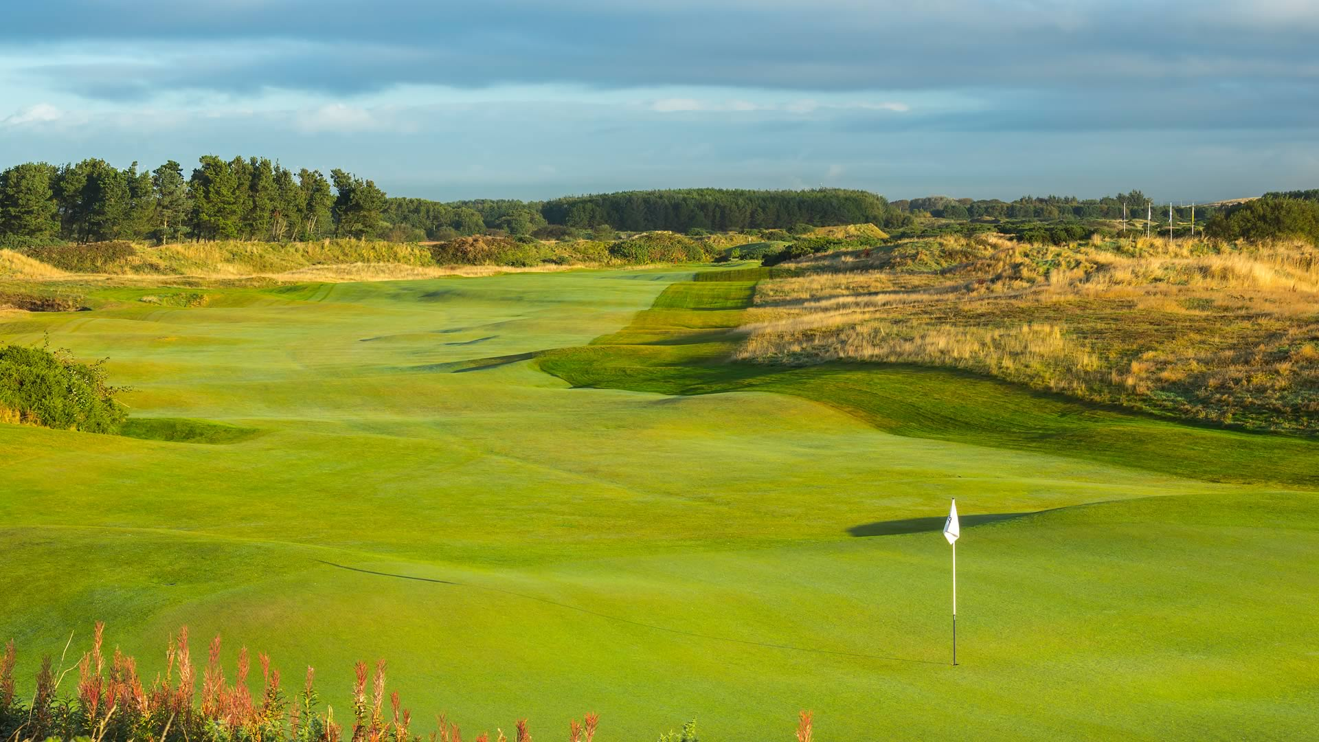 Dundonald Links Greens